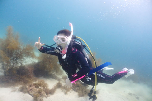 AIRE Diving School